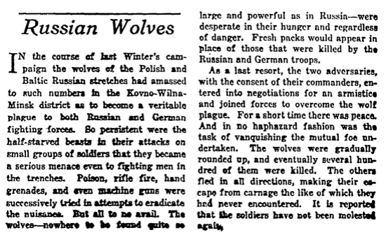 The original New York Times article, published July 29, 1917 and buried amid other tales of woe.